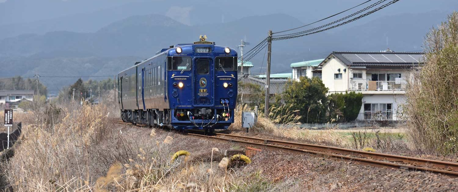 Limited express_train_kawasemiyamasemi(JR kyushu)
